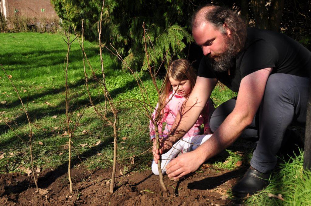 Heg aanplanten met Pien